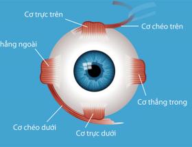 Phẫu thuật mắt lác (Mắt Lé) Và Những điều cần biết?